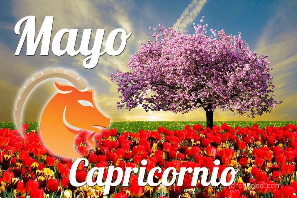 Capricornio horóscopo Mayo