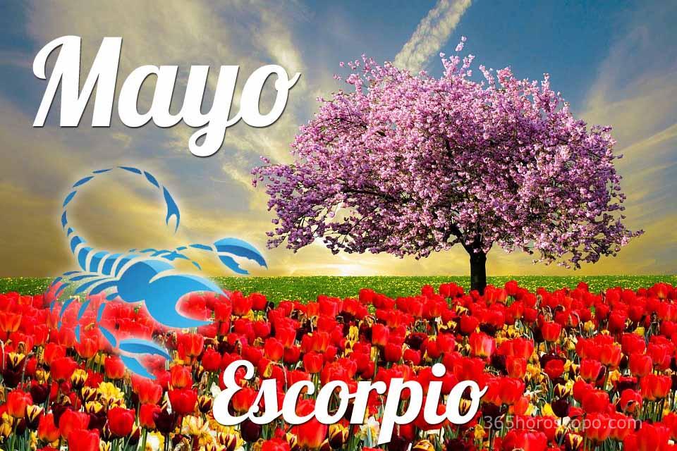 Escorpio Mayo 2020