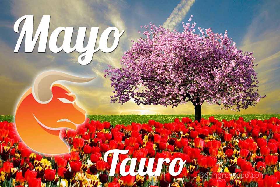 Tauro Mayo 2019